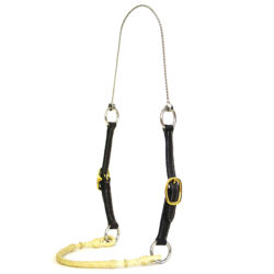 Training Halters