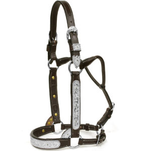 Mare/2 Year Old Halter 294
